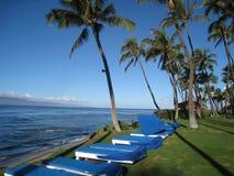 Παραλία Maui Kaanapali Στοκ Εικόνες