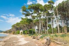Παραλία Mugoni στην άνοιξη Στοκ εικόνα με δικαίωμα ελεύθερης χρήσης