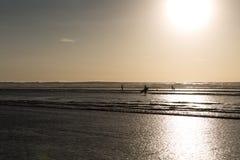 Παραλία Muriwai Στοκ Εικόνες