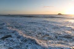 Παραλία Muriwai Στοκ Φωτογραφία