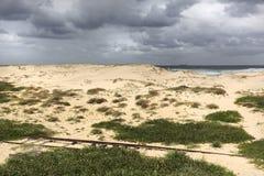 παραλία nobbys στοκ εικόνες με δικαίωμα ελεύθερης χρήσης