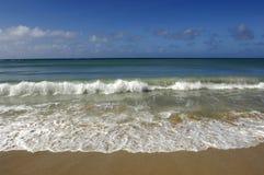 Παραλία Salines Les σε Sainte Anne στη Μαρτινίκα Στοκ Εικόνες