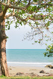 Παραλία Seaview στοκ εικόνες με δικαίωμα ελεύθερης χρήσης