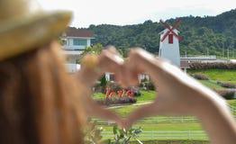 Παραδίδει τη διαμόρφωση μορφής καρδιών με την αγάπη Στοκ φωτογραφίες με δικαίωμα ελεύθερης χρήσης