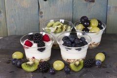 Παραλλαγή του γιαουρτιού φρούτων στοκ φωτογραφίες με δικαίωμα ελεύθερης χρήσης