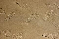 παραλιών όμορφα επίδρασης αμμώδη εμφανίζοντας ίχνη άμμου ιχνών κυματισμένα βήματα μεταδιδόμενα μέσω του ανέμου Στοκ φωτογραφίες με δικαίωμα ελεύθερης χρήσης