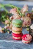 Παραδοσιακά γαλλικά ζωηρόχρωμα macarons σειρές σε ένα κιβώτιο Στοκ Φωτογραφίες