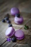 Παραδοσιακά γαλλικά macaroons με τα βακκίνια Στοκ Φωτογραφίες