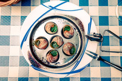 Παραδοσιακά σαλιγκάρια με το βούτυρο σκόρδου Στοκ εικόνες με δικαίωμα ελεύθερης χρήσης