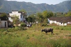 Παραδοσιακά σπίτια, Anhui, Κίνα Στοκ εικόνα με δικαίωμα ελεύθερης χρήσης