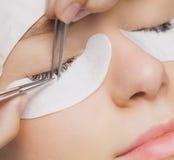 Παραδοσιακές επεκτάσεις eyelash Εκλεκτική εστίαση τονισμένος Κινηματογράφηση σε πρώτο πλάνο Makeup στοκ φωτογραφία με δικαίωμα ελεύθερης χρήσης