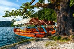 Παραδοσιακές ξύλινες βάρκες Pletna στη λίμνη που αιμορραγείται Στοκ εικόνα με δικαίωμα ελεύθερης χρήσης
