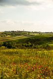 Παραδοσιακές Tuscan καλές απόψεις Στοκ Εικόνα