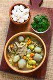 Παραδοσιακή βολιβιανή σούπα αποκαλούμενη Chairo de Tunta Στοκ φωτογραφίες με δικαίωμα ελεύθερης χρήσης