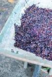 Παραδοσιακή κατασκευή κρασιού Στοκ Εικόνες