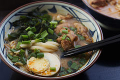 Παραδοσιακός Ασιάτης η σούπα με τα νουντλς, κρεμμύδι άνοιξη, κοτόπουλο, τεμαχισμένο αυγό Στοκ φωτογραφία με δικαίωμα ελεύθερης χρήσης