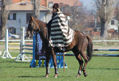 Ημέρα του Theodore (άλογο Πάσχα) Στοκ εικόνα με δικαίωμα ελεύθερης χρήσης