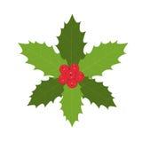 Παραδοσιακός ελαιόπρινος Χριστουγέννων με τα κόκκινα μούρα απεικόνιση αποθεμάτων