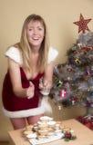 Παραδοσιακός κομματιάστε τις πίτες και τη ζάχαρη τήξης στα Χριστούγεννα Στοκ Εικόνα