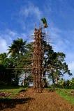 Παραδοσιακός πύργος κατάδυσης Nangol εδάφους στο νησί Pentecost, Βανουάτου Στοκ εικόνα με δικαίωμα ελεύθερης χρήσης