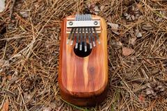 Παραδοσιακό αφρικανικό μουσικό kalimba οργάνων σε ένα υπόβαθρο των βελόνων και των κώνων σε ένα δάσος Στοκ εικόνα με δικαίωμα ελεύθερης χρήσης
