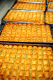 Παραδοσιακό επιδόρπιο τουρκικό Baklava Στοκ Εικόνες