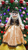 Παραδοσιακό ευρωπαϊκό φόρεμα Στοκ εικόνες με δικαίωμα ελεύθερης χρήσης