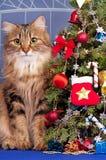 παραδοσιακό διάνυσμα συμβόλων Χριστουγέννων κομψό Στοκ Εικόνα