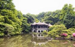 Παραδοσιακό ιαπωνικό τσάι Στοκ φωτογραφίες με δικαίωμα ελεύθερης χρήσης