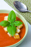 Παραδοσιακό ισπανικό κρύο gazpacho σούπας ντοματών με το βασιλικό και croutons Στοκ φωτογραφίες με δικαίωμα ελεύθερης χρήσης