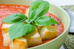 Παραδοσιακό ισπανικό κρύο gazpacho σούπας ντοματών με το βασιλικό και croutons Στοκ Εικόνες