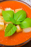 Παραδοσιακό ισπανικό κρύο gazpacho σούπας ντοματών με το βασιλικό και croutons Στοκ φωτογραφία με δικαίωμα ελεύθερης χρήσης