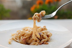 Παραδοσιακό ιταλικό carbonara ζυμαρικών με το μπέϊκον και αυγό στο δίκρανο Στοκ φωτογραφία με δικαίωμα ελεύθερης χρήσης