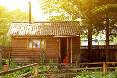 Παραδοσιακό ρωσικό παλαιό ξύλινο λουτρό από το πλαίσιο κοντά στο πεύκο το καλοκαίρι Στοκ φωτογραφία με δικαίωμα ελεύθερης χρήσης