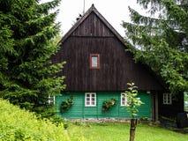 Παραδοσιακό σαλέ βουνών, φυσικό καφετί και πράσινο μέτωπο Στοκ Φωτογραφίες