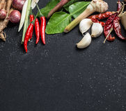 Παραδοσιακό ταϊλανδικό συστατικό χορταριών κουζίνας τροφίμων της πικάντικης σούπας του Tom Yum στο μαύρο υπόβαθρο Στοκ Εικόνα