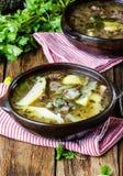 Παραδοσιακό της Χιλής λατινοαμερικάνικο ajiaco σούπας κρέατος που εξυπηρετείται στο πιάτο αργίλου Στοκ Φωτογραφίες