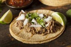 Παραδοσιακό χοιρινό κρέας Tacos στοκ φωτογραφίες με δικαίωμα ελεύθερης χρήσης