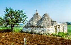 Παραδοσιακό Apulian Trullo Στοκ εικόνα με δικαίωμα ελεύθερης χρήσης