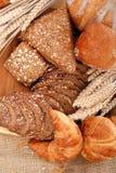 παρουσίαση ψωμιού ποικίλη Στοκ εικόνα με δικαίωμα ελεύθερης χρήσης
