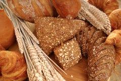 παρουσίαση ψωμιού ποικίλη Στοκ φωτογραφίες με δικαίωμα ελεύθερης χρήσης