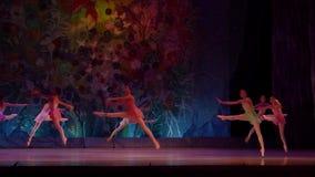 Παρουσιάστε μαργαριτάρια μπαλέτου απόθεμα βίντεο