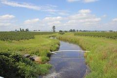 Παροχή της γεωργίας το νερό Στοκ εικόνα με δικαίωμα ελεύθερης χρήσης