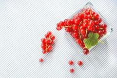παρόν κόκκινο Στοκ εικόνες με δικαίωμα ελεύθερης χρήσης