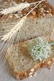 πασπαλίστε τη oniony φέτα του μ&epsi Στοκ φωτογραφίες με δικαίωμα ελεύθερης χρήσης
