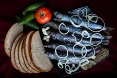 Παστά ψάρια ποταμών που εξυπηρετούνται με το ψωμί, τις ντομάτες, τα καρυκεύματα και τα κρεμμύδια Στοκ Εικόνα