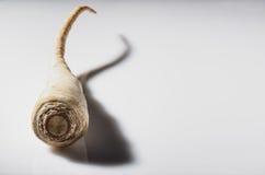 Παστινάκη στο άσπρο υπόβαθρο Στοκ εικόνες με δικαίωμα ελεύθερης χρήσης