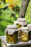 Παστωμένα μανιτάρια και αγγούρια Στοκ εικόνα με δικαίωμα ελεύθερης χρήσης