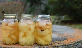 Παστωμένα φρούτα στα βάζα γυαλιού Στοκ Εικόνες