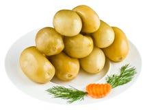 Παστωμένες ντομάτες στο άσπρο πιάτο Στοκ Εικόνα